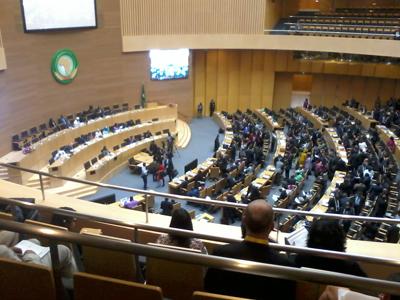 African Union summit, Addis Ababa, January 2014